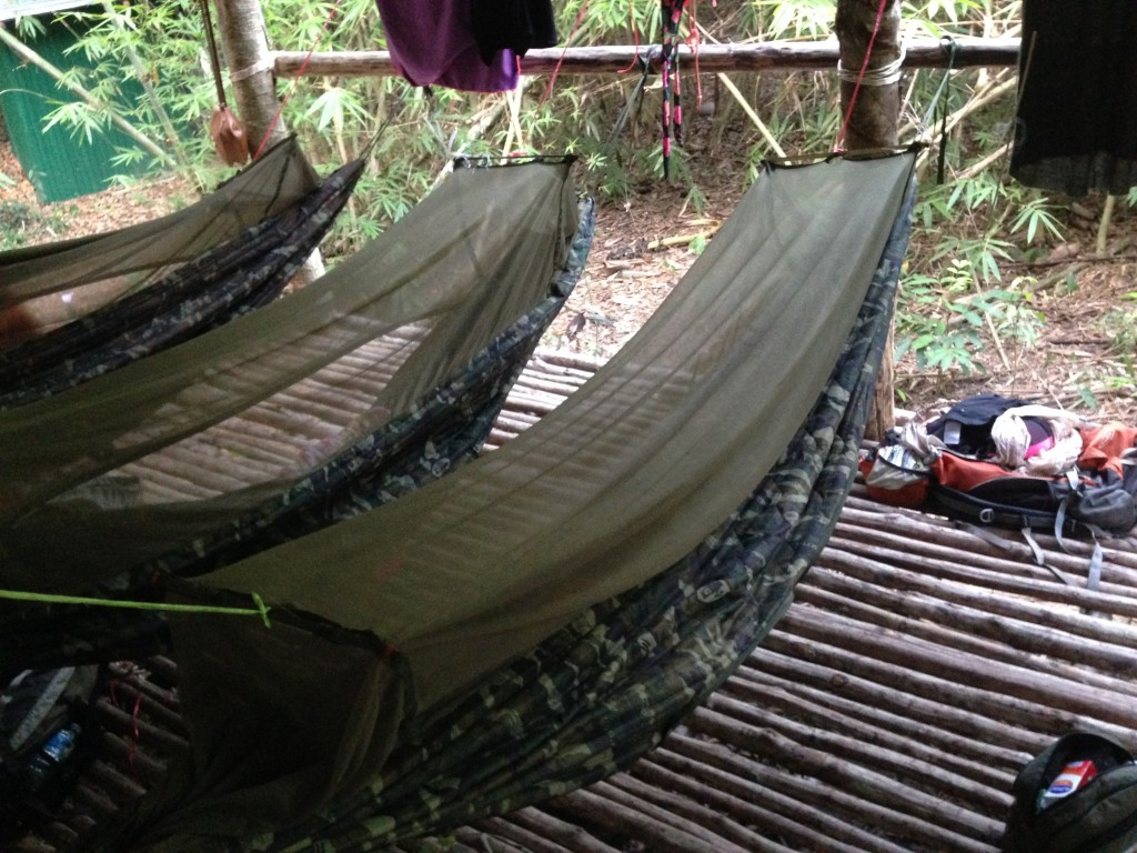 hammocks in the jungle