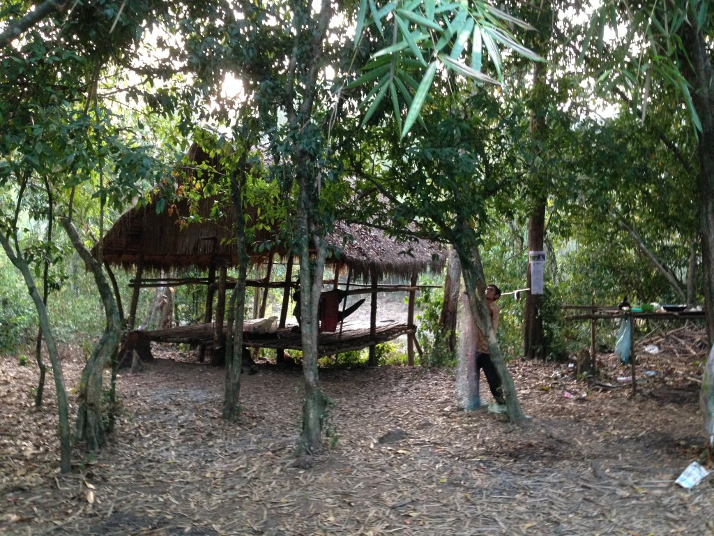 jungle trekking  camp
