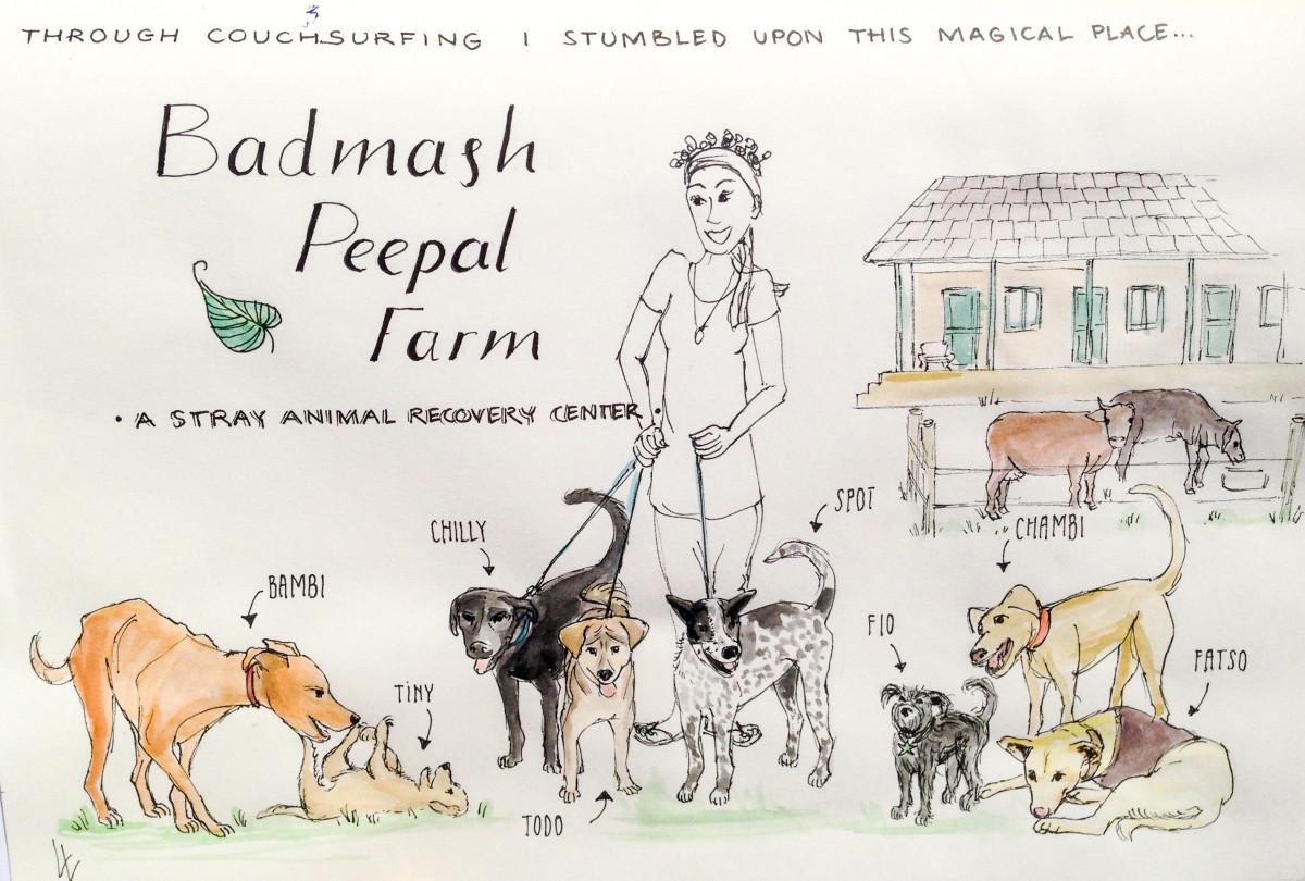 badmash peepal farm